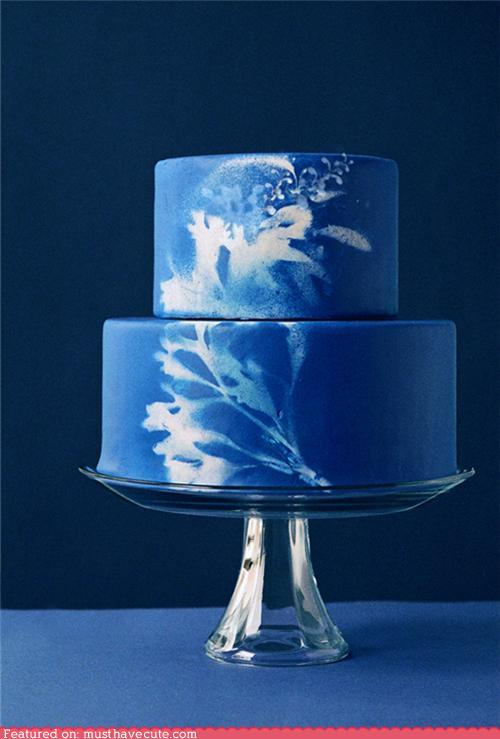 Sunprint Cake