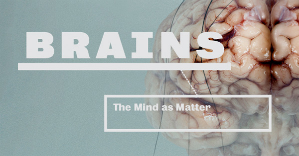 Brains: The Mind as Matter
