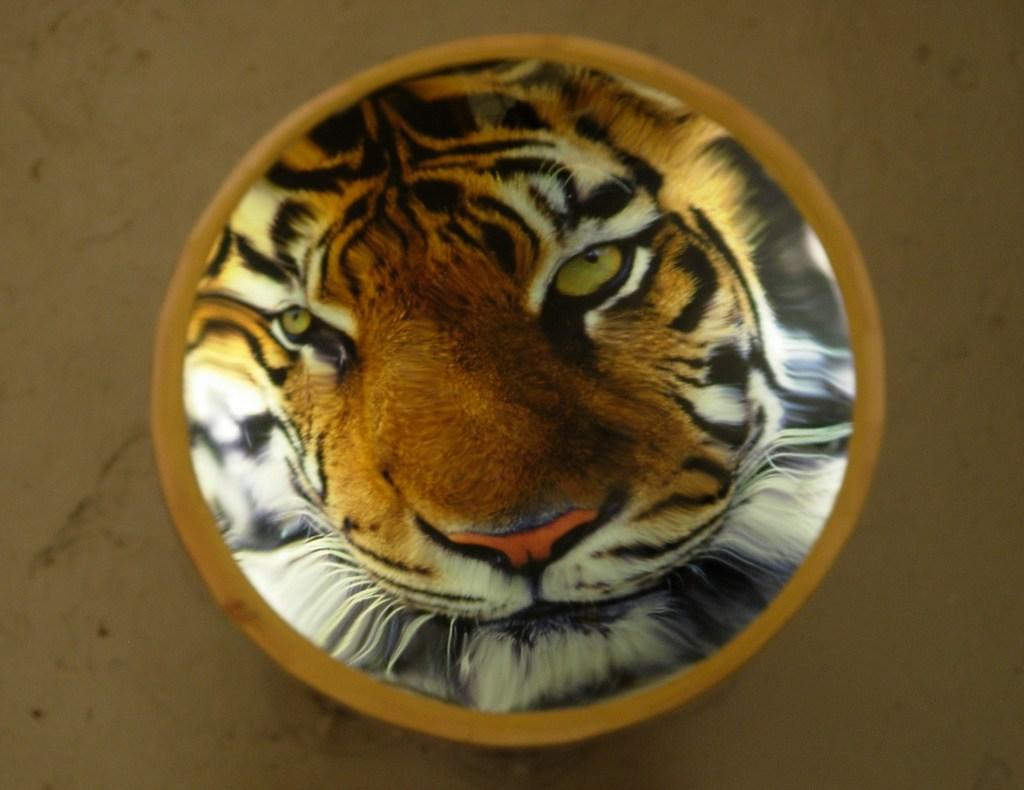 Tiger Drum